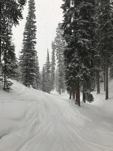 Tree skiing big sky Montana